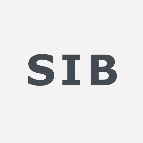 Logo: Schweizerisches Institut für Betriebsökonomie (SIB)