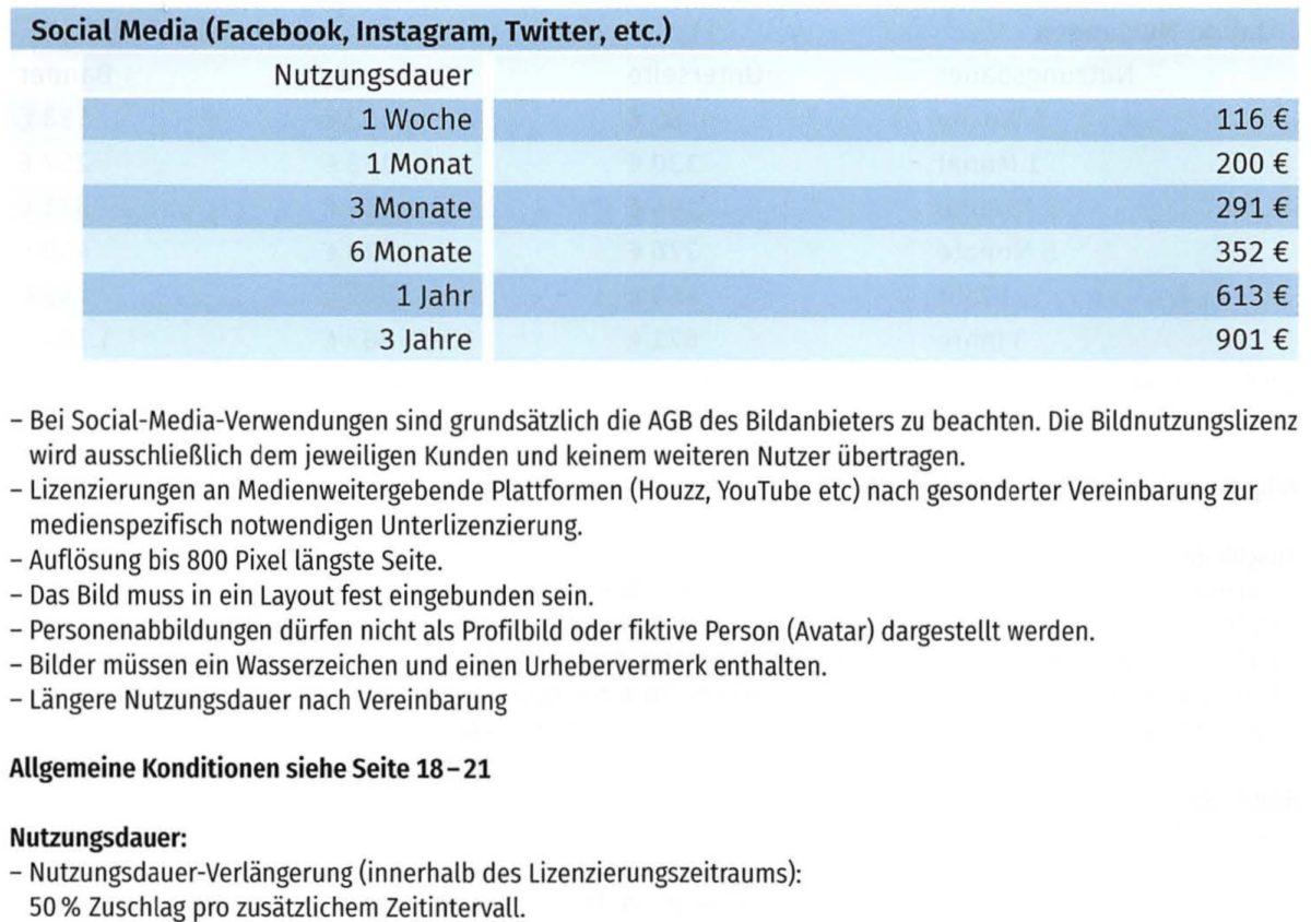 Dokument: Kosten für Social Media-Nutzungen gemäss MFM-Bildhonoraren 2020 (Auszug)