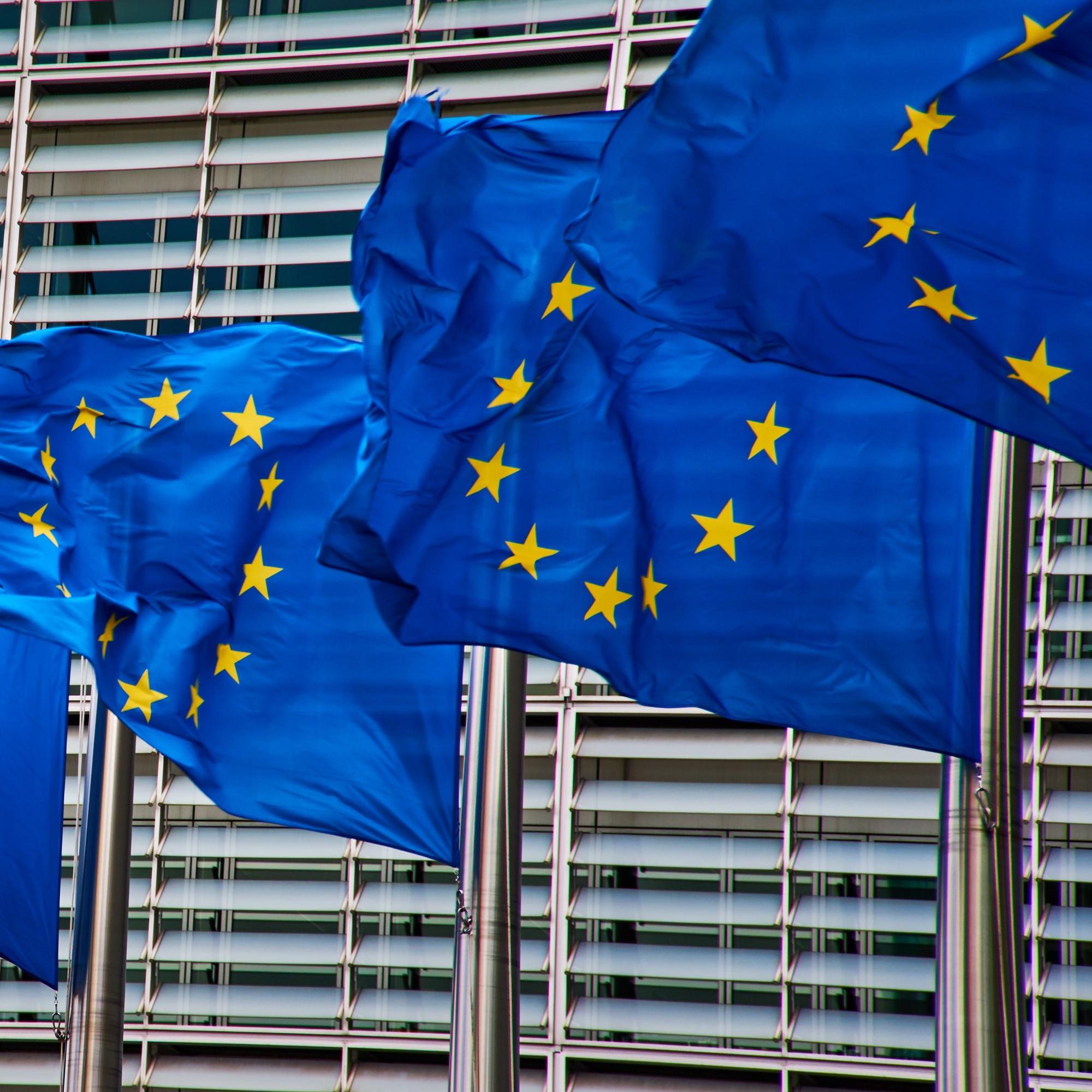 Foto: Flaggen der Europäischen Union (EU)