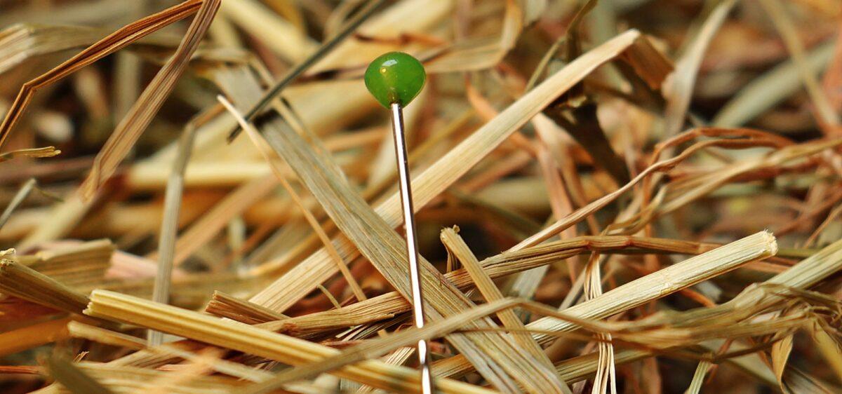 Foto: Nadel im Heuhaufen
