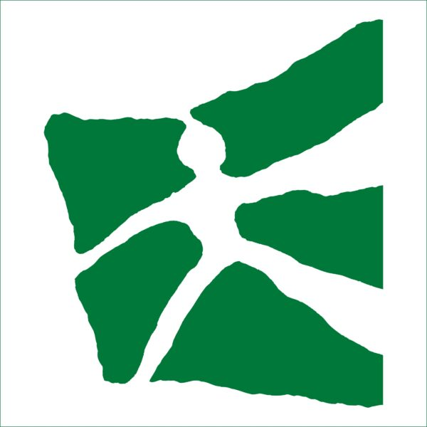 Logo: Universität St.Gallen (HSG)