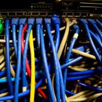Foto: Viele Netzwerkkabel